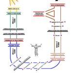 Pathway to Profession Diagram