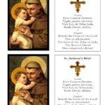St. Anthony Brief Sacramental