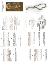 Franciscan Family Chaplet